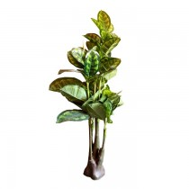 Natural Looking Decorative Rubber Plant SKU-3124